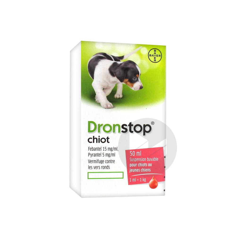 Bayer Dronstop Chiot Suspension Buvable 50 Ml