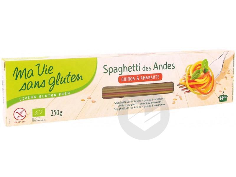 Spaghetti des Andes 3 céréales Bio - 250 g