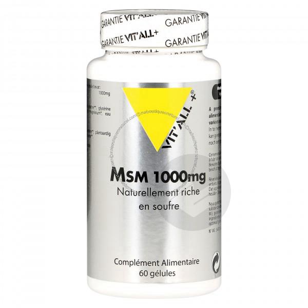 Msm - Methylsulfonylmethane 1000 mg - 60 gélules