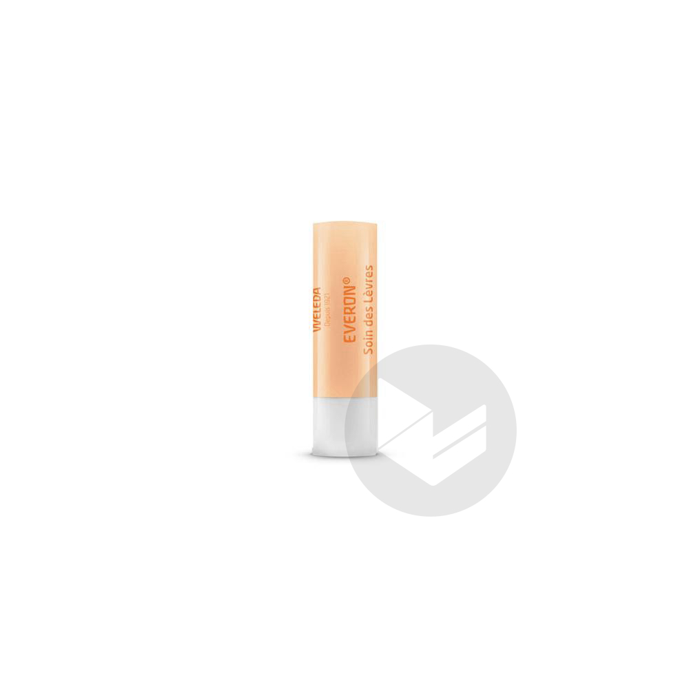 Everon Stick Labial Traitant Protecteur 4 8 G