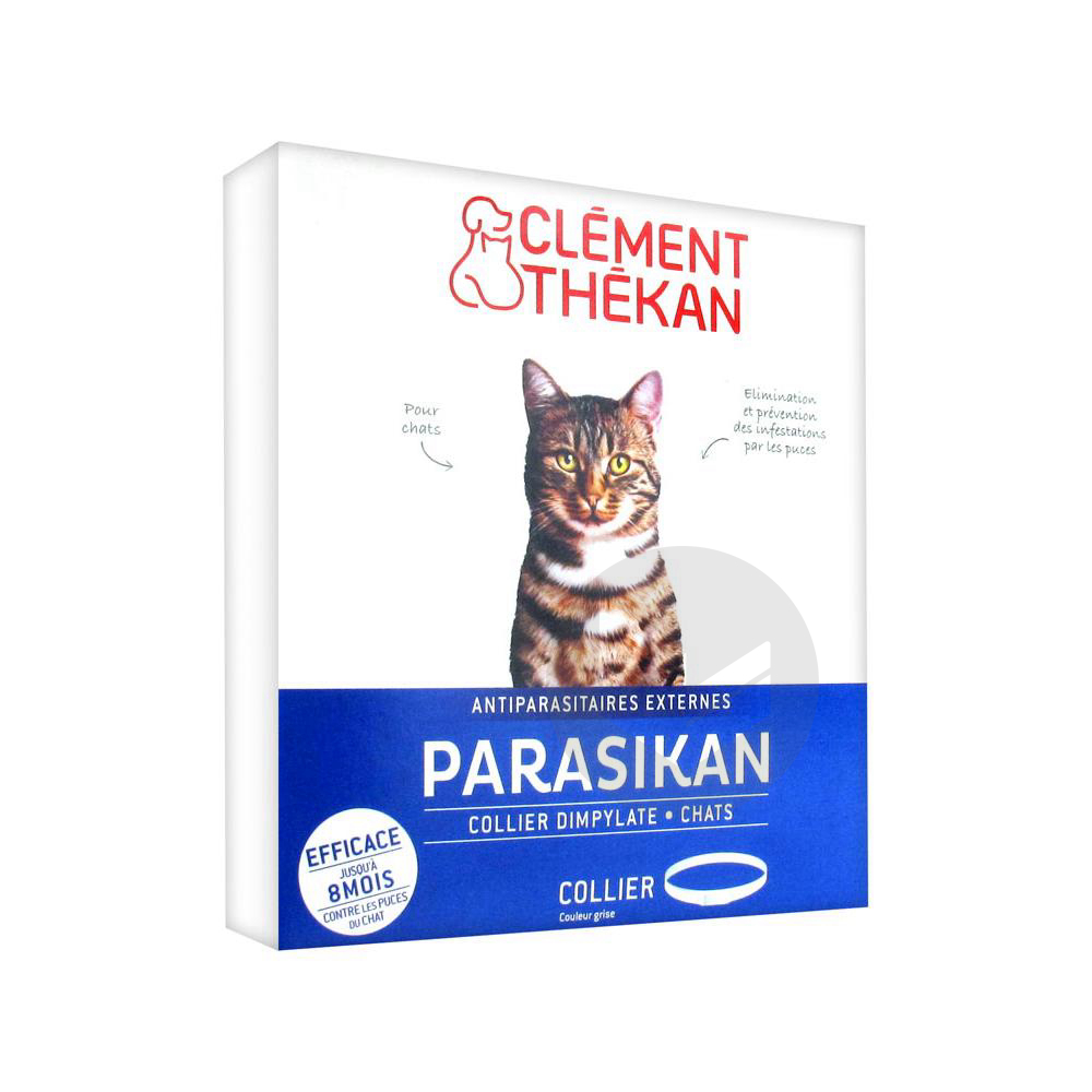Parasikan Collier Chat B 1