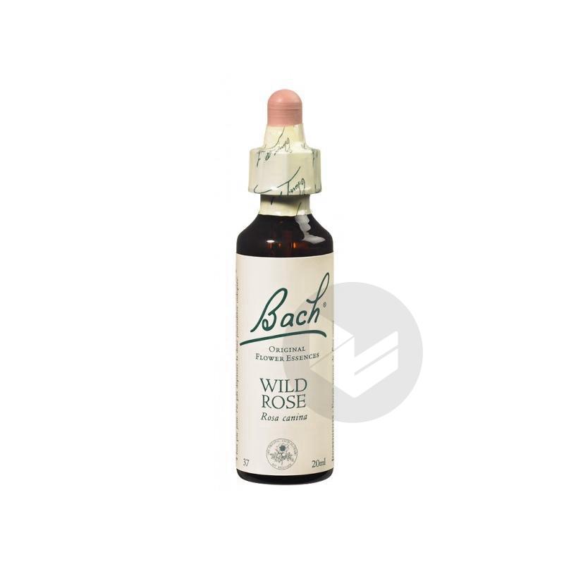 Wild Rose Elixir Floral Fl Cpte Gttes 20 Ml