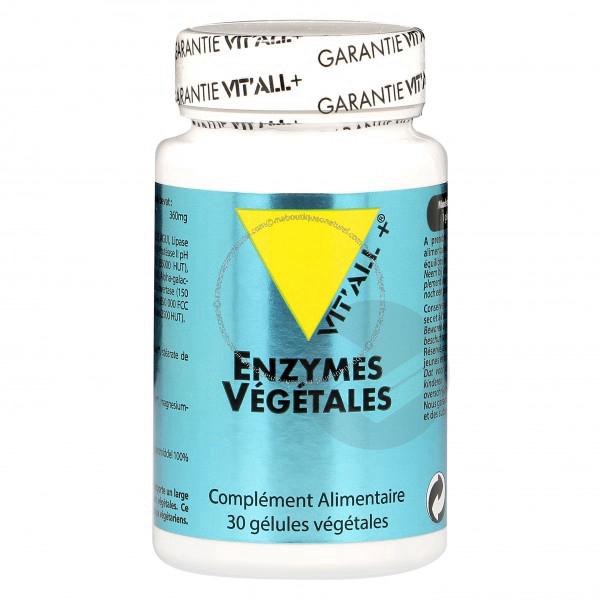 Enzymes végétales - 30 gélules