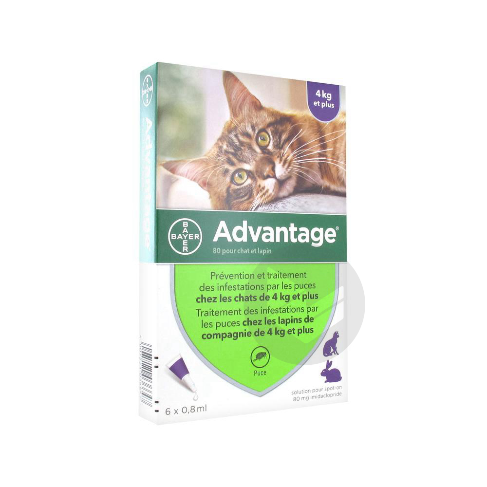Advantage 80 S Appl Loc Lapin Chat Plus 4 Kg 6 Pipettes 0 8 Ml