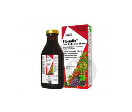 Floradix Fer + Plantes - 250 ml