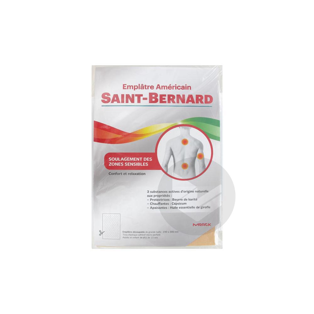Saint Bernard Emplatre 15 X 22 Cm