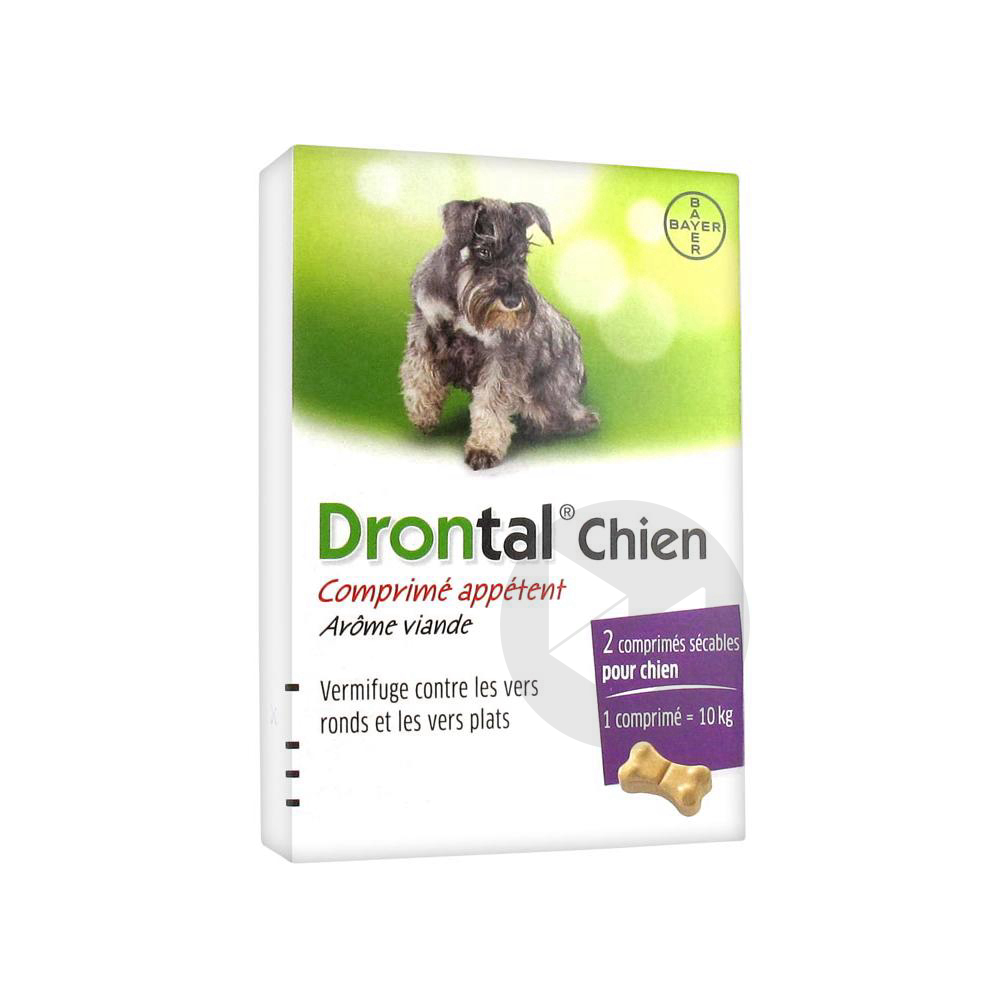 Drontal Cpr Chien B 2