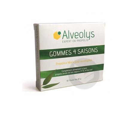 Gommes 4 Saisons Gout Miel 40 G