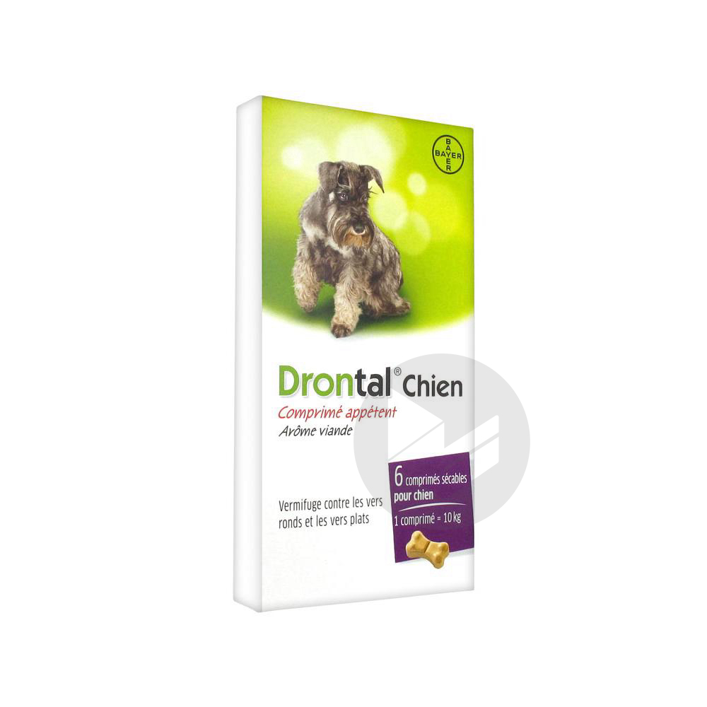 Drontal Cpr Chien B 6