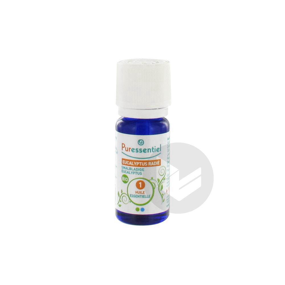 Expert Huile Essentielle Bio Eucalyptus Radie Fl 10 Ml