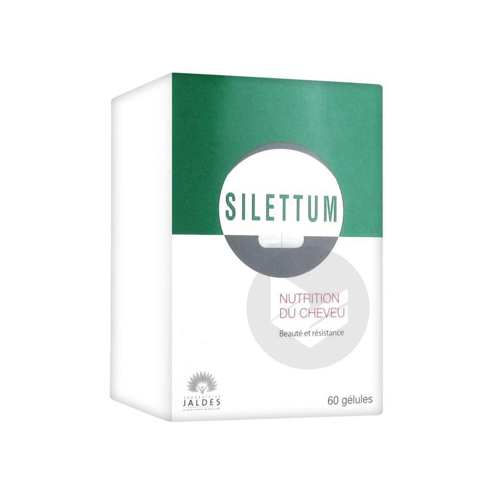 Silettum Gel Capillaire B 60