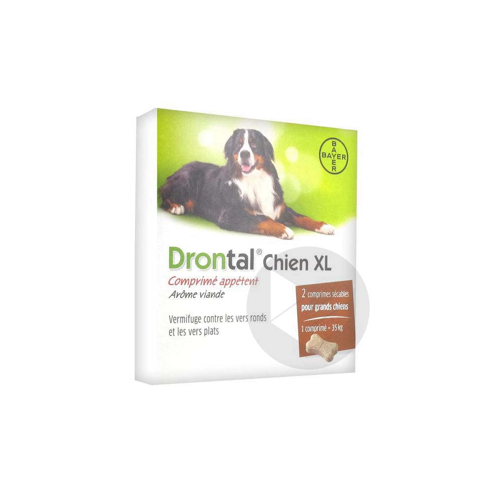 Drontal P Xl Cpr Chien B 2