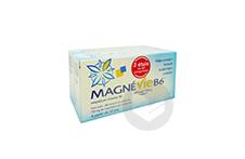MAGNEVIE B6 100 mg/10 mg Comprimé pelliculé (2 plaquettes de 60)