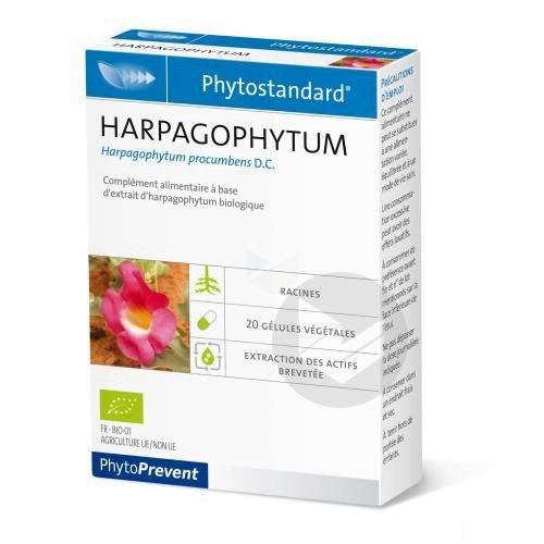 Phytostandard Harpagophytum Gel B 20