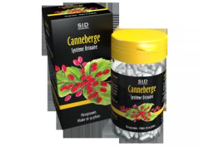 Canneberge X 90
