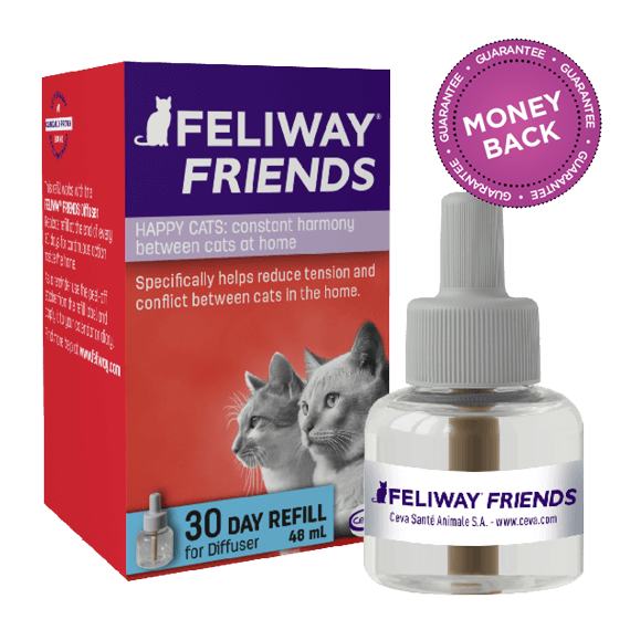 Recharge Feliway Friends Chat 48 Ml