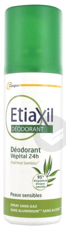 Deodorant Vegetal 24 H Spray 100 Ml