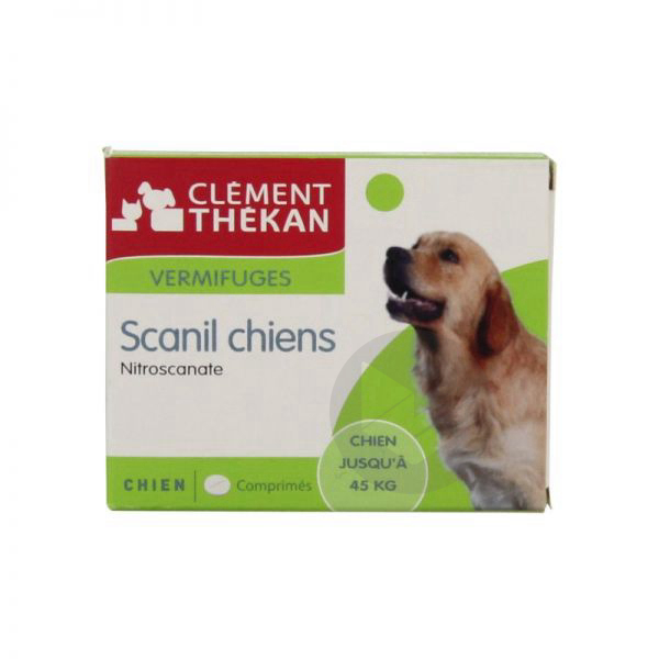 Scanil Cpr Chien B 4