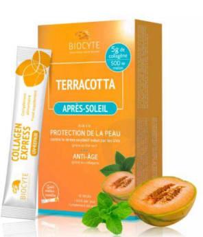 Terracotta Apres Soleil 10 Sticks