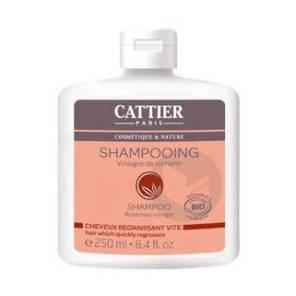 Shampooing Cheveux Gras Fl 250 Ml
