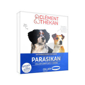 Parasikan Collier Chien B 1