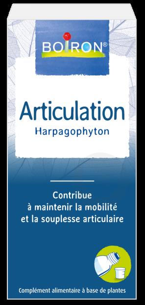 Extrait De Plantes Articulations Harpagophyton
