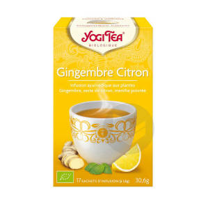 Tis Ayurvedique Gingembre Citron 17 Sach