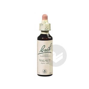 Walnut Elixir Floral 20 Ml