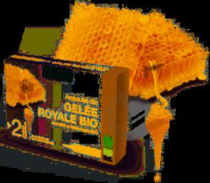 Nat Form Ampoules Gelee Royale Bio S Buv 20 Amp 10 Ml