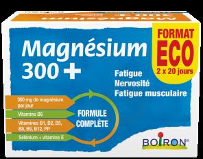 Magnesium 300 160 Comprimes