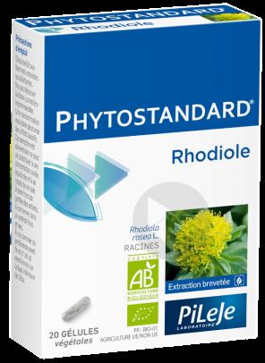Phytostandard Rhodiole Gel B 20