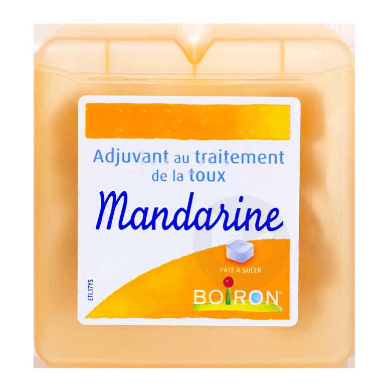 PATES BOIRON Pâte pectorale mandarine (Boîte de 60g)